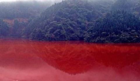 中国がん村画像3