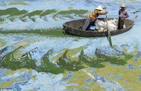 中国がん村画像2