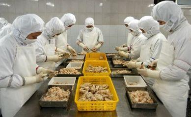 中国食品工場