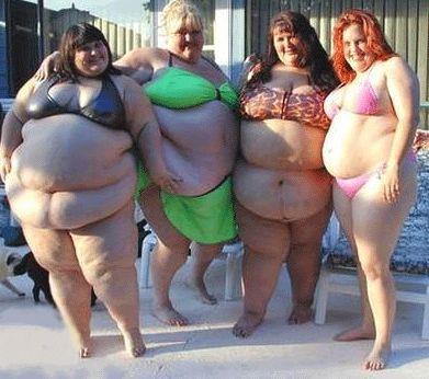 トランス脂肪酸による肥満8