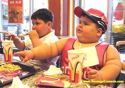 トランス脂肪酸による肥満6