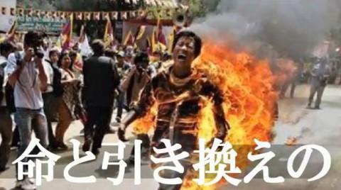 チベット焼身自殺