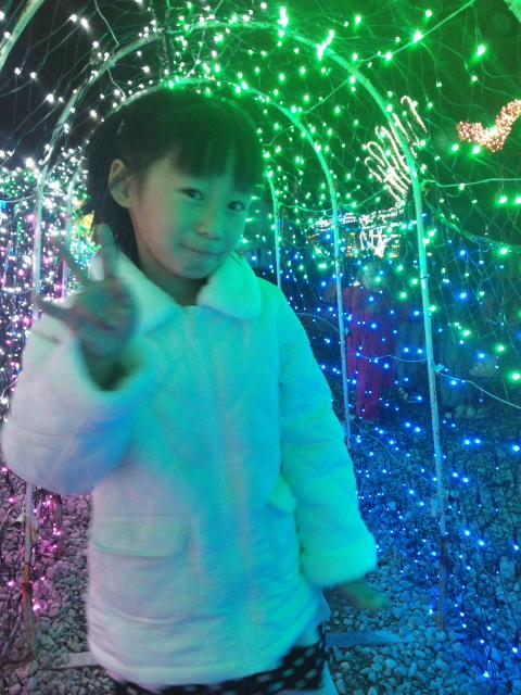 再春館サンクスイルミネーション2013画像・写真集。