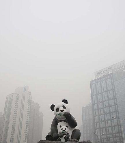 PM2.5北京画像5