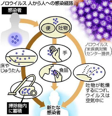 ノロウイルス感染経路