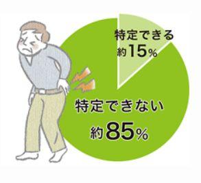 腰痛の原因は85%不明