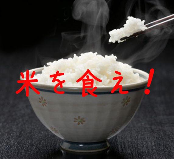 日本人なら米を食おうぜ!米が安い!